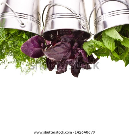 fresh herbs for cooking in tin buckets overturned isolated on white background - stock photo