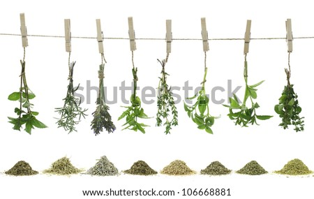 Fresh herbs hanging on a rope - stock photo