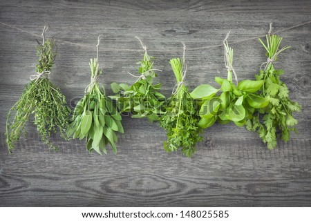 Fresh herbs hanging over wooden background - stock photo