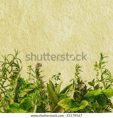 Fresh herbs in a border combined with textured paper to give a grunge effect.
