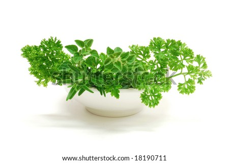 Fresh herbs in a bowl on a white background
