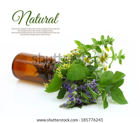 Fresh herbs in a medical bottle - stock photo