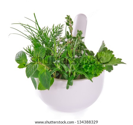 Fresh herbs in mortar on white background - stock photo
