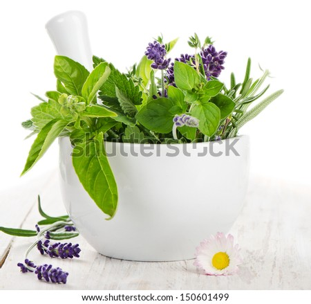 Fresh herbs on a wooden table isolated on white background - stock photo