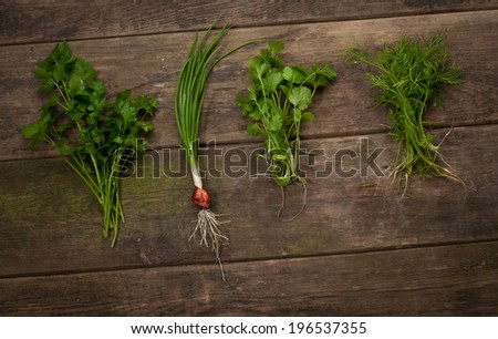 Fresh herbs over wooden background