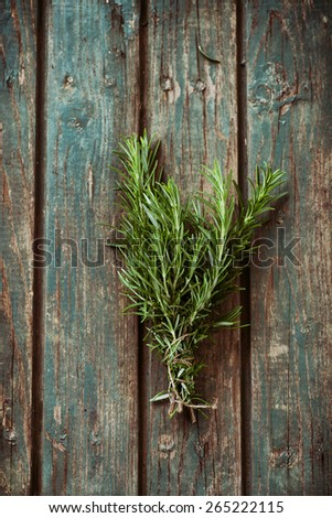 Fresh herbs. Rosemary in rustic setting. Garden herbs - stock photo