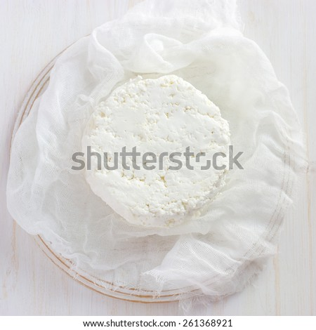 Fresh homemade cottage cheese  on white background, top view, square image