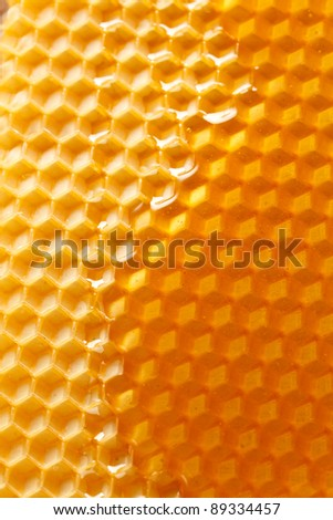 fresh honey in comb - stock photo