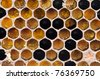 fresh honeycomb texture close up - stock photo