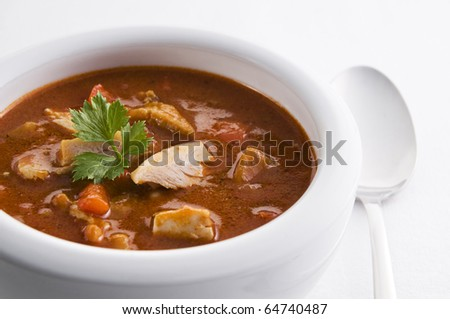 Fresh hot chicken stew in a bowl close up - stock photo