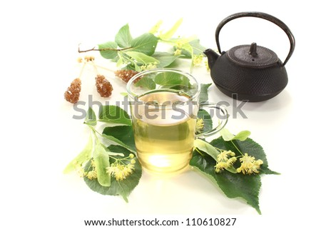 fresh hot lime blossom tea on a bright background