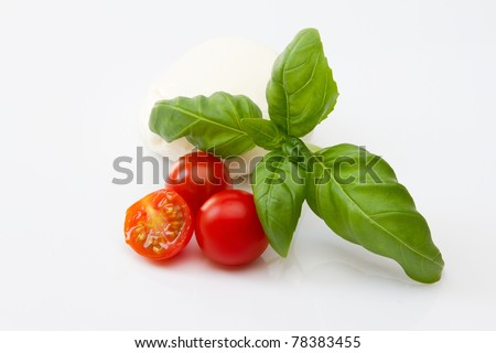 Fresh italian salad ingredients - stock photo