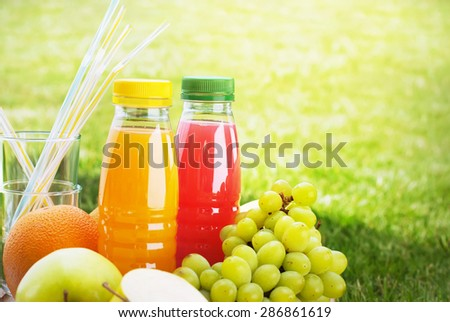 Fresh Juice and Fruit in Small Bottles on a Natural Green Background - stock photo