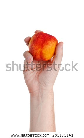 fresh juicy tasty red and yellow peach in a human hand isolated on a white background - stock photo