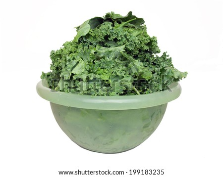 fresh kale stacked in a green plastic bowl - stock photo