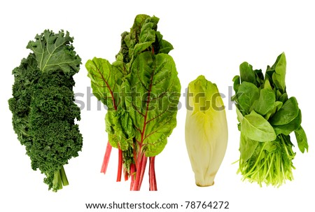 fresh kale, swiss chard, belgian endive and spinach on a white background - stock photo