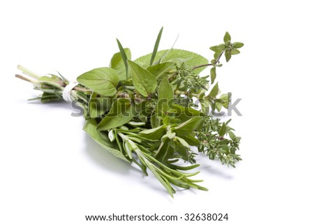 Fresh kitchen herbs including rosemary, oregano, thyme, sage and tarragon - stock photo