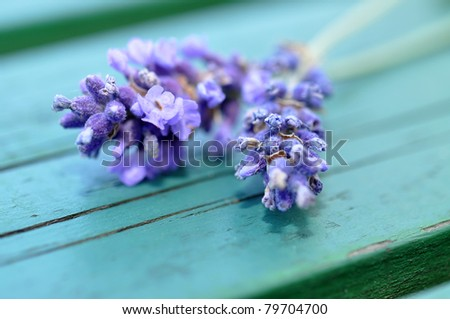 Fresh lavender on a wooden table - stock photo