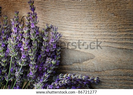 Fresh lavender over wooden background - stock photo