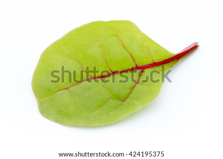 Fresh leaf beet root isolated on white background.