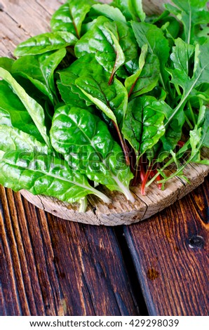 Fresh leaves of spinach, chard and arugula - stock photo