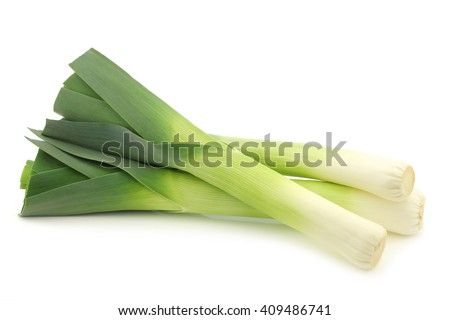 fresh leek on a white background
