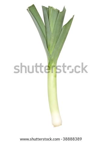 Fresh leeks isolated on a white background - stock photo