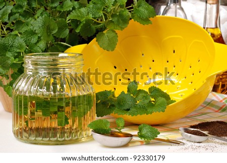 Fresh lemon balm herb (Melissa officinalis) with lemon shaped colander and ingredients for herbal tea and vinaigrette dressing.  Closeup with shallow dof. - stock photo