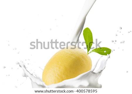 Fresh Lemon Falling On Milk Splash - stock photo