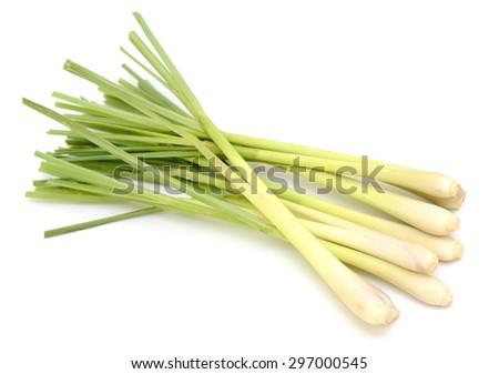 Fresh Lemongrass isolated on white background - stock photo