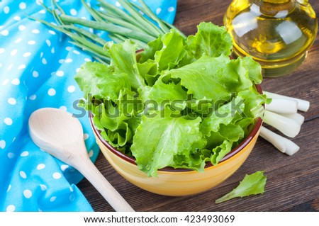 Fresh lettuce in bowl and olive oil, kitchen towel and kitchenware on wooden rustic background. Cooking salad. Healthy food or diet concept - stock photo