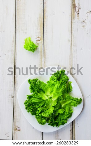Fresh lettuces on plate over white wooden background. Top view. Healthy food, diet or cooking concept. - stock photo