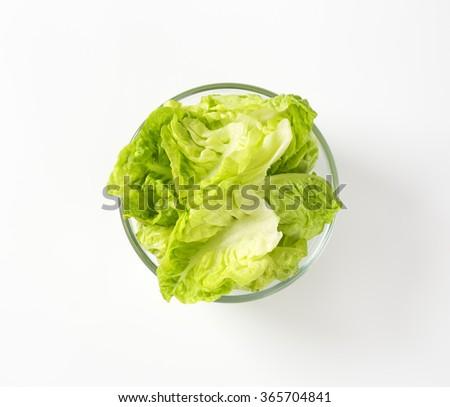 Fresh little gem lettuce - stock photo