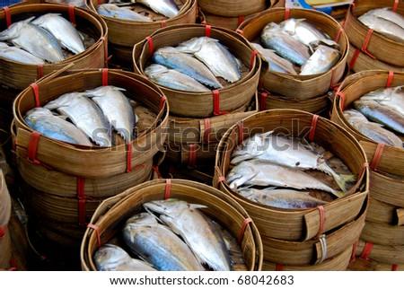 fresh mackerel in basket in market , Asia , Thailand - stock photo