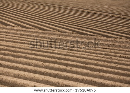 fresh made agricultural field texture - stock photo