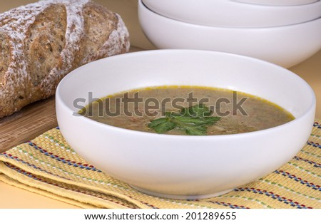 Fresh made pureed vegetable soup - stock photo