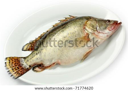 マンダリン魚 Stock Photos, Illustrations, and Vector Art