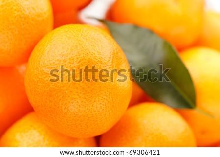 fresh mandarins - stock photo