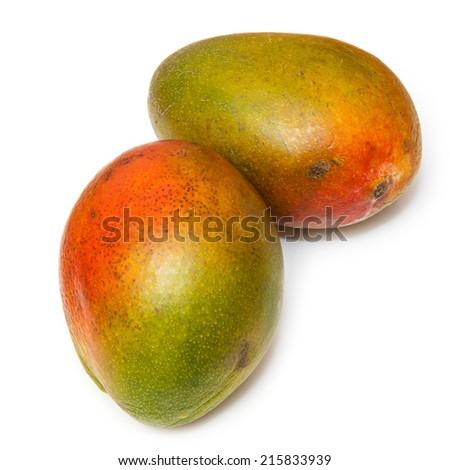 Fresh mangoes isolated on a white studio background. - stock photo