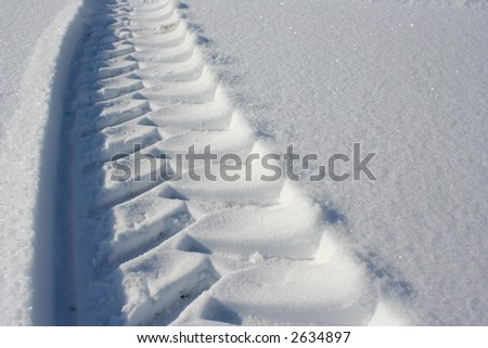 Fresh marks in a white powder - stock photo
