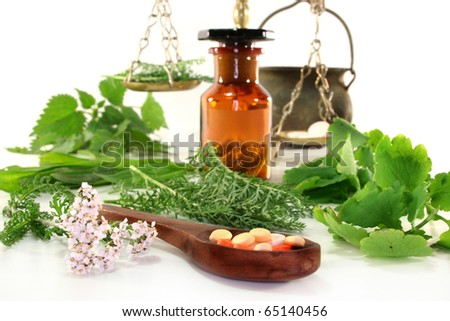 fresh medicinal herbs and spices on a white background - stock photo