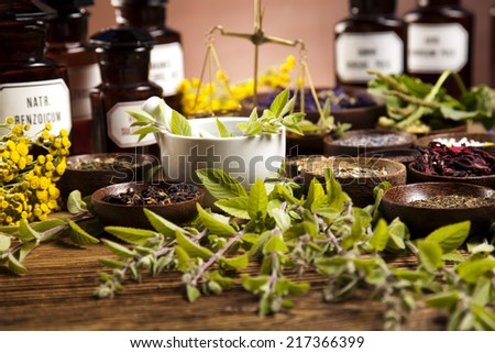 Fresh medicinal herbs on wooden   - stock photo