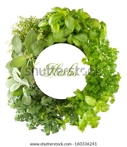 fresh mediterranean herbs and spices over white background with space for your text with sample text HERBS. healthy cooking concept - stock photo