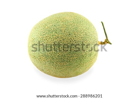fresh melon on white background - stock photo