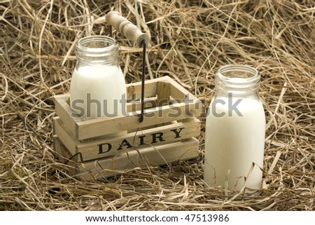 Fresh milk from dairy on haystack - stock photo