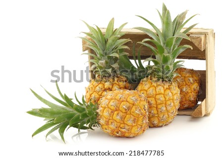 fresh mini pineapple fruit in a wooden box on a white background - stock photo