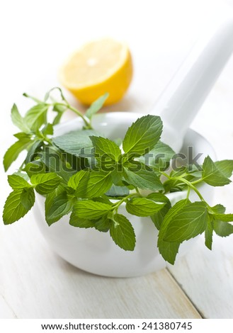 Fresh Mint in a mortar and lemon - stock photo
