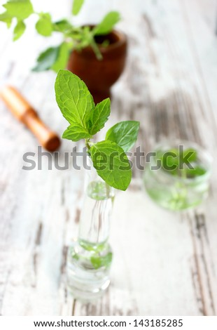 fresh mint in  glass on wooden - stock photo