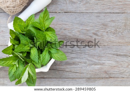 Fresh mint in mortar on garden table. Top view with copy space - stock photo