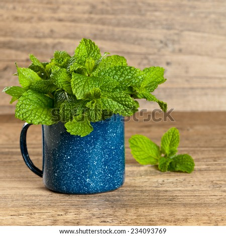 Fresh mint in mug. Selective focus. - stock photo